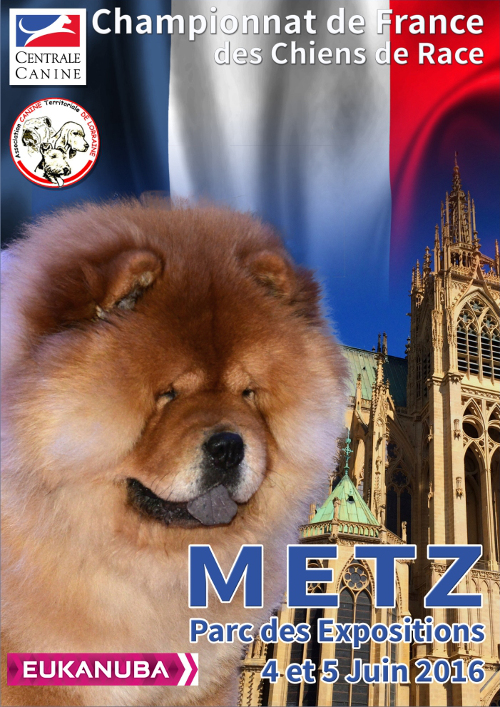 poster of the 138th championship of France in Metz